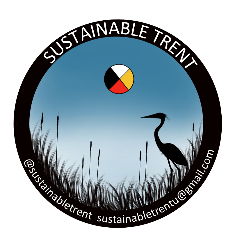 st logo FINAL transparent